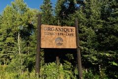Organique2