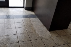 Quality House & Carpeting Cleaning 2